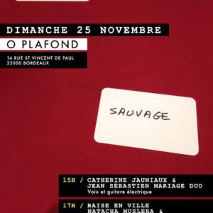 O PLAFOND – Catherine Jauniaux / Natacha Muslera / Jean Sébastien Mariage – DUOS